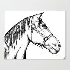 Zodiak Canvas Print