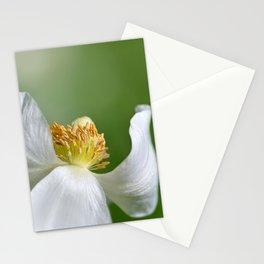 Anemone 252 Stationery Cards