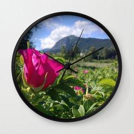 Haines Alaska Wild Rose Wall Clock