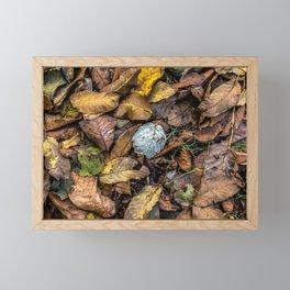 Summer is gone, Autumn is finally here Framed Mini Art Print