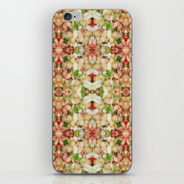 Chick Pea/Fava Bean Salad 2 iPhone Skin