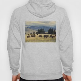 National Parks Bison Herd Hoody