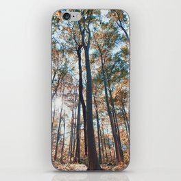 into the woods 06 iPhone Skin