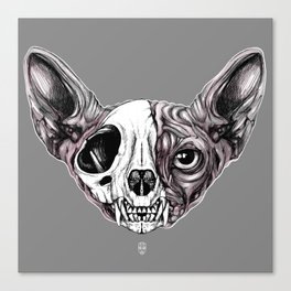 Shynx Half Skull Canvas Print