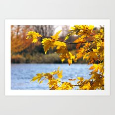 A day in fall Art Print