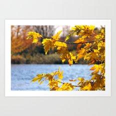 A day in fall Art Print