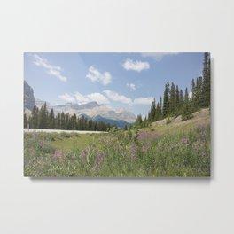 Jasper flowers Metal Print