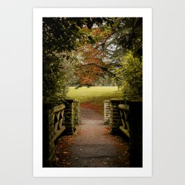 Frozen 2 in the Autumn Art Print