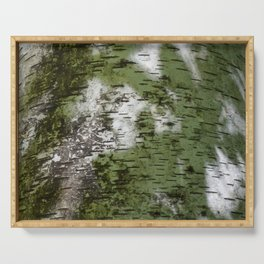 Birch Bark Pattern Green and White Wood Pattern Bring the Outdoors In Serving Tray