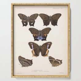 Moths And Butterfly Vintage Scientific Hand Drawn Insect Anatomy Biological Illustration Serving Tray
