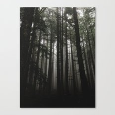 Foggy Trees, Larch Mountain, OR Canvas Print