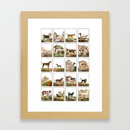 Dogs In Vintage Style Framed Art Print