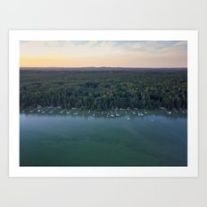 Cottage Grove Art Print