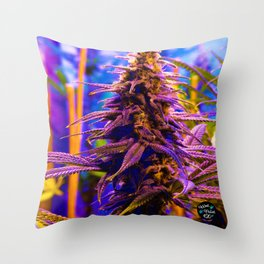 Purple Kush Kola Throw Pillow