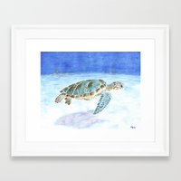 sea turtle Framed Art Prints featuring Sea turtle by Savousepate
