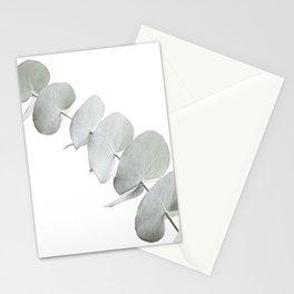 EUCALYPTUS WHITE 3 Stationery Cards