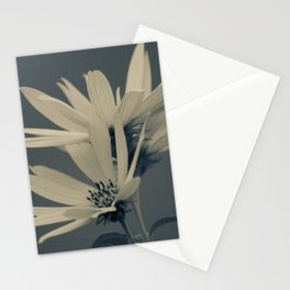 Sunflowers in the blue Stationery Cards