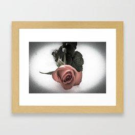Rose resting in the snow Framed Art Print