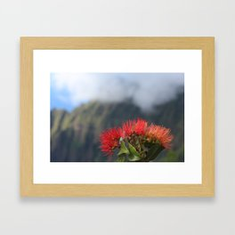 Lehua ʻUlaʻula o Kalalau Framed Art Print