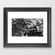 Texture Tree Rings Tree slice Old Tree photograph Natural beauty Framed Art Print