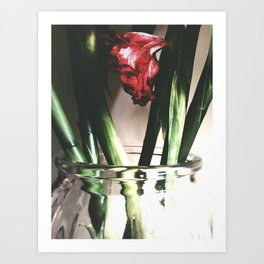 After Chinese New Year 2013 Art Print