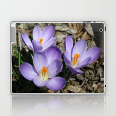 Garden Flowers Laptop & iPad Skin
