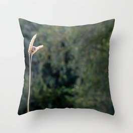 Small Beauty. Throw Pillow