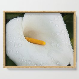 Calla Lily with Dew Serving Tray