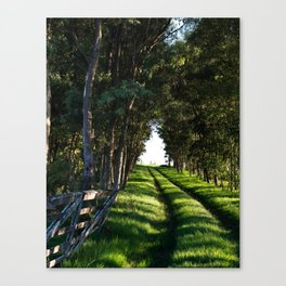 Road Home Canvas Print