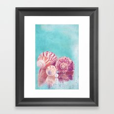 Seashell Group Framed Art Print