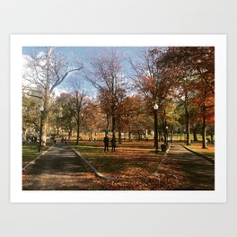 Autumn in the Boston Common Art Print