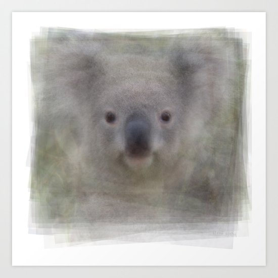 Koala Portrait Art Print