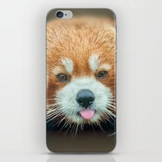 PANDA-RING TO ONE'S TASTE iPhone & iPod Skin