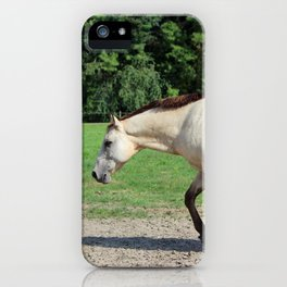 Off On A Trot iPhone Case