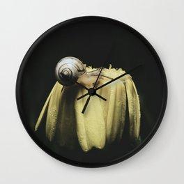 Nature Macro Photography - dark Snail on a Yellows. Wall Clock
