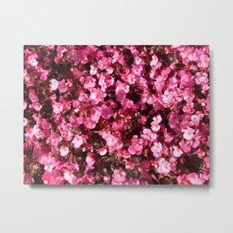 Pink Flower Power Metal Print