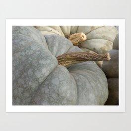Blue Pumpkin Close up Art Print