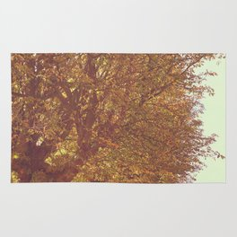 Avenue of Trees Rug