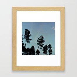 Fog and Forest IV-wood,mist,romantic, greenery,sunset,dawn,Landes forest,fantasy Framed Art Print
