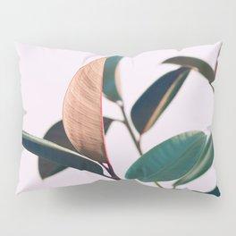 Ficus Elastica #4 Pillow Sham