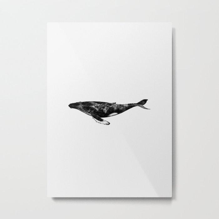 Whale Metal Print