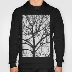 Undetermined  Hoody