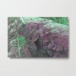 Pink Green Moss Metal Print