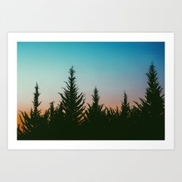 TREES - SUNSET - SUNRISE - SKY - COLOR - FOREST - PHOTOGRAPHY Art Print