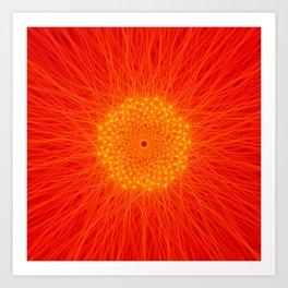 Phyllotaxis sun/flower Art Print