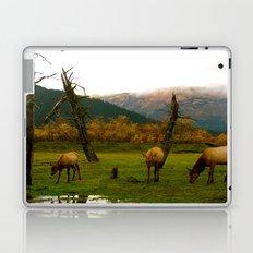 Alaskan Wildlife  Laptop & iPad Skin