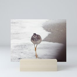 Greater Yellowlegs  Couple Stalk the Cameraman Mini Art Print