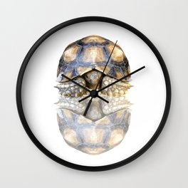 Sulcata Tortoise with Reflection Wall Clock