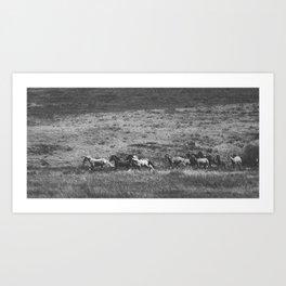 Montana Time Art Print