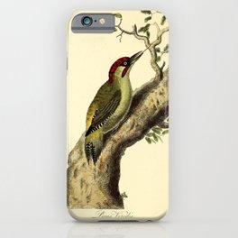 Eurasian Green or Iberian Woodpecker10 iPhone Case